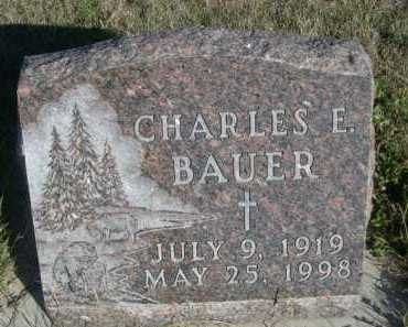 BAUER, CHARLES E. - Dawes County, Nebraska | CHARLES E. BAUER - Nebraska Gravestone Photos