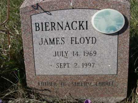 BIERNACKI, JAMES FLOYD - Dawes County, Nebraska | JAMES FLOYD BIERNACKI - Nebraska Gravestone Photos