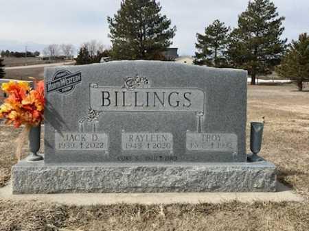 BILLINGS, RAYLEEN - Dawes County, Nebraska | RAYLEEN BILLINGS - Nebraska Gravestone Photos