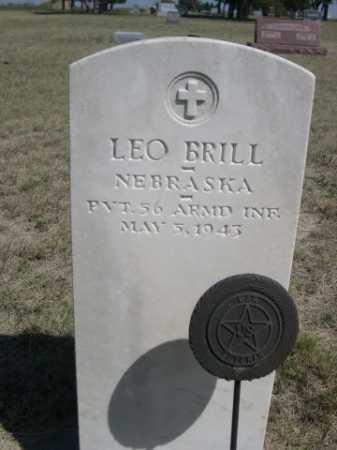 BRILL, LEO - Dawes County, Nebraska | LEO BRILL - Nebraska Gravestone Photos