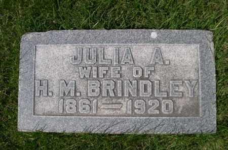 BRINDLEY, JULIA A. - Dawes County, Nebraska | JULIA A. BRINDLEY - Nebraska Gravestone Photos