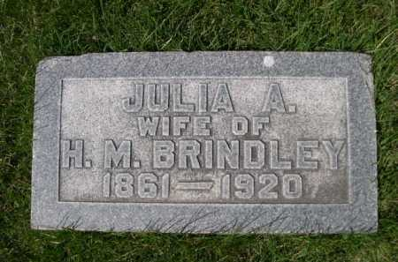BRINDLEY, JULIA A. - Dawes County, Nebraska | JULIA A. BRINDLEY - Nebraska Gravestone Photos