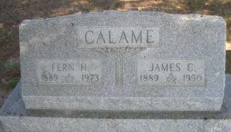 CALAME, JAMES C. - Dawes County, Nebraska | JAMES C. CALAME - Nebraska Gravestone Photos