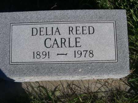 CARLE, DELIA - Dawes County, Nebraska | DELIA CARLE - Nebraska Gravestone Photos