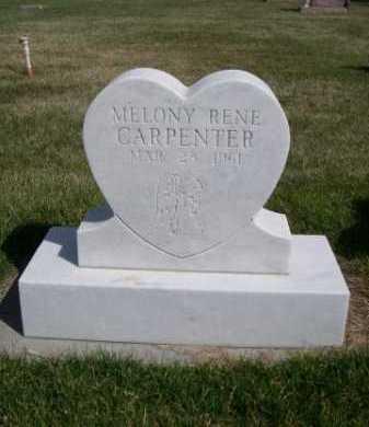 CARPENTER, MELONY RENE - Dawes County, Nebraska | MELONY RENE CARPENTER - Nebraska Gravestone Photos