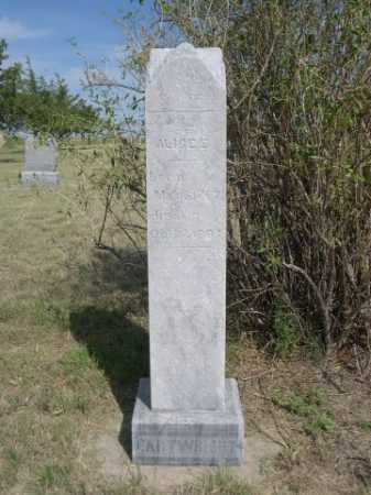 CARTWRIGHT, ALICE E. - Dawes County, Nebraska | ALICE E. CARTWRIGHT - Nebraska Gravestone Photos