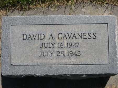 CAVANESS, DAVID A. - Dawes County, Nebraska | DAVID A. CAVANESS - Nebraska Gravestone Photos