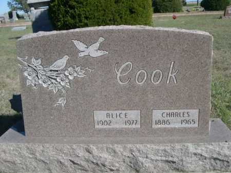 COOK, ALICE - Dawes County, Nebraska | ALICE COOK - Nebraska Gravestone Photos