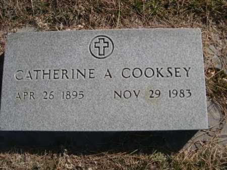 COOKSEY, CATHERINE A - Dawes County, Nebraska | CATHERINE A COOKSEY - Nebraska Gravestone Photos