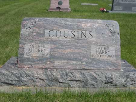COUSINS, AUDREY - Dawes County, Nebraska | AUDREY COUSINS - Nebraska Gravestone Photos