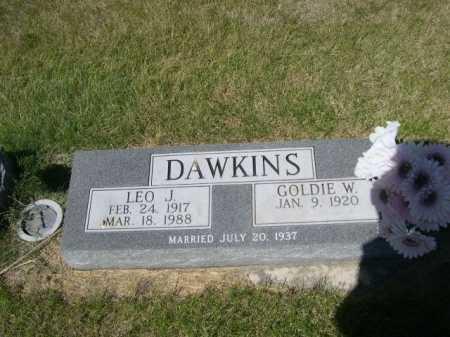 DAWKINS, LEO J. - Dawes County, Nebraska | LEO J. DAWKINS - Nebraska Gravestone Photos