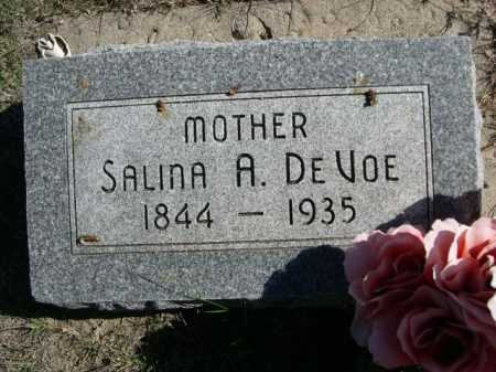 DE VOE, SALINA A. - Dawes County, Nebraska   SALINA A. DE VOE - Nebraska Gravestone Photos