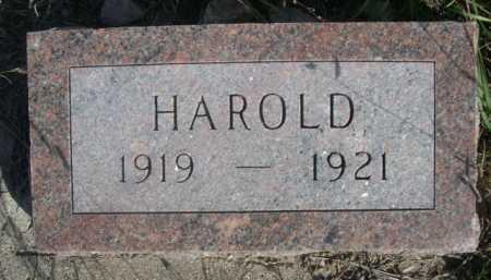 ELLIS, HAROLD - Dawes County, Nebraska | HAROLD ELLIS - Nebraska Gravestone Photos