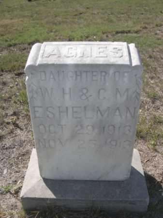 ESHELMAN, AGNES - Dawes County, Nebraska | AGNES ESHELMAN - Nebraska Gravestone Photos