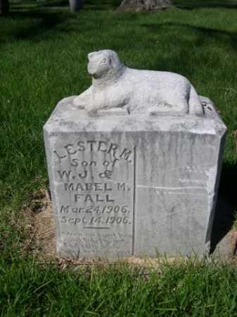 FALL, LESTER M. - Dawes County, Nebraska | LESTER M. FALL - Nebraska Gravestone Photos