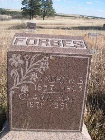 FORBES, CLARA MAE - Dawes County, Nebraska | CLARA MAE FORBES - Nebraska Gravestone Photos