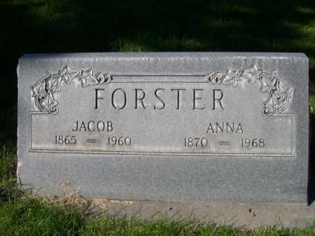 FOSTER, JACOB - Dawes County, Nebraska | JACOB FOSTER - Nebraska Gravestone Photos
