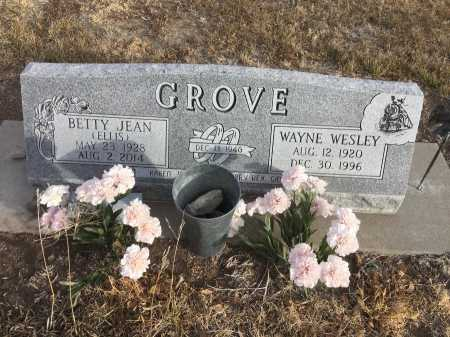 ELLIS GROVE, BETTY JEAN - Dawes County, Nebraska | BETTY JEAN ELLIS GROVE - Nebraska Gravestone Photos