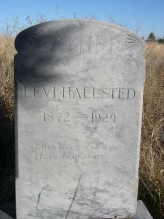 HALLSTED, LEVI - Dawes County, Nebraska   LEVI HALLSTED - Nebraska Gravestone Photos