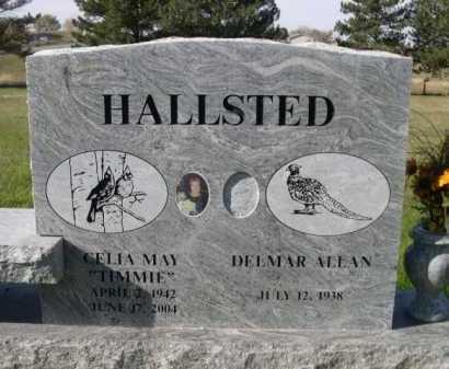HALLSTED, DELMAR ALLAN - Dawes County, Nebraska | DELMAR ALLAN HALLSTED - Nebraska Gravestone Photos