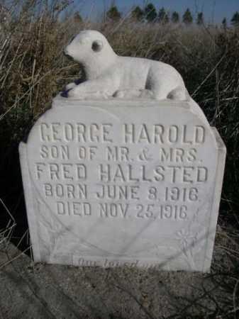 HALLSTED, GEORGE HAROLD - Dawes County, Nebraska   GEORGE HAROLD HALLSTED - Nebraska Gravestone Photos