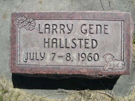 HALLSTED, LARRY GENE - Dawes County, Nebraska   LARRY GENE HALLSTED - Nebraska Gravestone Photos