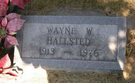 HALLSTED, WAYNE W. - Dawes County, Nebraska | WAYNE W. HALLSTED - Nebraska Gravestone Photos