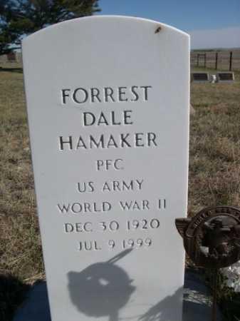 HAMAKER, FORREST DALE - Dawes County, Nebraska   FORREST DALE HAMAKER - Nebraska Gravestone Photos