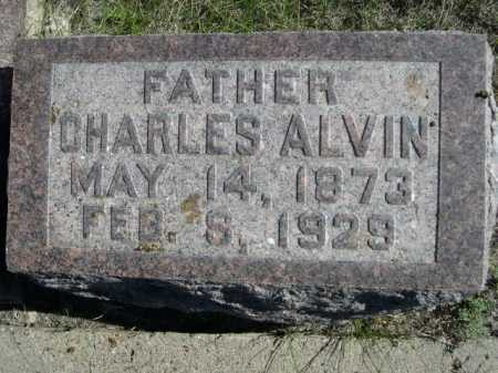 HAMM, CHARLES ALVIN - Dawes County, Nebraska | CHARLES ALVIN HAMM - Nebraska Gravestone Photos