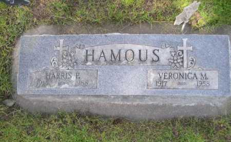 HAMOUS, VERONICA M. - Dawes County, Nebraska | VERONICA M. HAMOUS - Nebraska Gravestone Photos