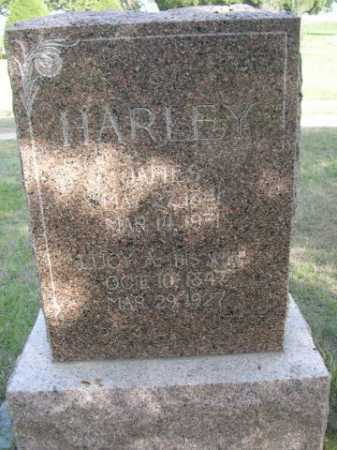 HARLEY, JAMES - Dawes County, Nebraska | JAMES HARLEY - Nebraska Gravestone Photos