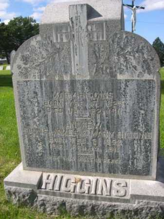 HIGGINS, MARY - Dawes County, Nebraska | MARY HIGGINS - Nebraska Gravestone Photos