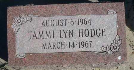 HODGE, TAMMI LYN - Dawes County, Nebraska | TAMMI LYN HODGE - Nebraska Gravestone Photos