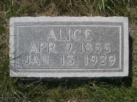 HODKINSON, ALICE - Dawes County, Nebraska | ALICE HODKINSON - Nebraska Gravestone Photos