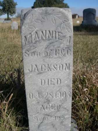 JACKSON, MANNIE A. - Dawes County, Nebraska | MANNIE A. JACKSON - Nebraska Gravestone Photos