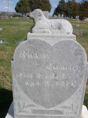 JAMES, ROSIE - Dawes County, Nebraska   ROSIE JAMES - Nebraska Gravestone Photos