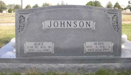 JOHNSON, ALICE - Dawes County, Nebraska | ALICE JOHNSON - Nebraska Gravestone Photos