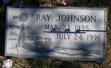 JOHNSON, RAY - Dawes County, Nebraska | RAY JOHNSON - Nebraska Gravestone Photos