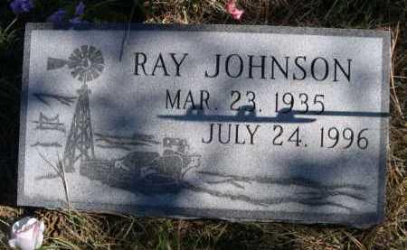 JOHNSON, RAY - Dawes County, Nebraska   RAY JOHNSON - Nebraska Gravestone Photos