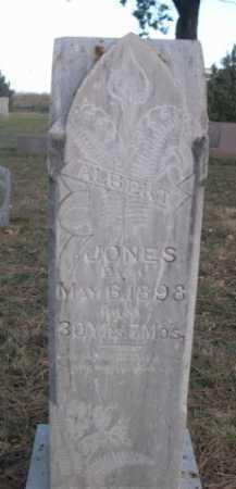 JONES, ALBERT - Dawes County, Nebraska | ALBERT JONES - Nebraska Gravestone Photos