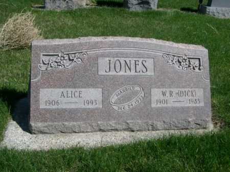 JONES, ALICE - Dawes County, Nebraska | ALICE JONES - Nebraska Gravestone Photos