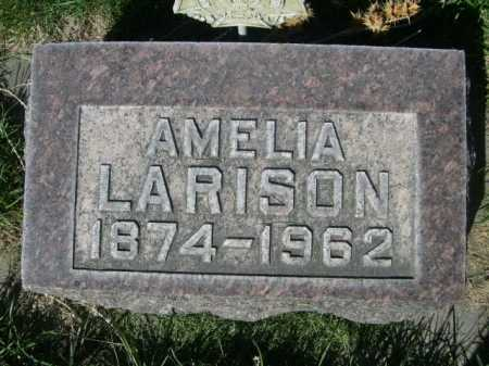 LARISON, AMELIA - Dawes County, Nebraska | AMELIA LARISON - Nebraska Gravestone Photos