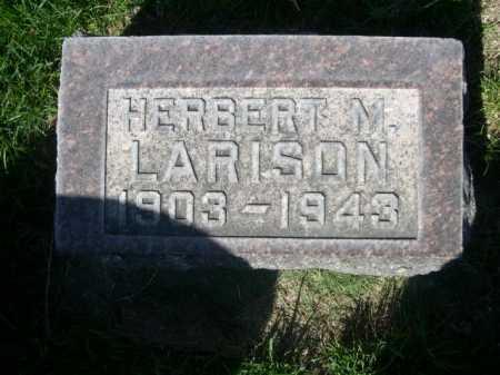 LARISON, HERBERT M. - Dawes County, Nebraska | HERBERT M. LARISON - Nebraska Gravestone Photos