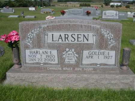 LARSEN, HARLAN E. - Dawes County, Nebraska | HARLAN E. LARSEN - Nebraska Gravestone Photos
