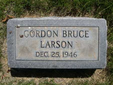 LARSON, GORDON BRUCE - Dawes County, Nebraska | GORDON BRUCE LARSON - Nebraska Gravestone Photos