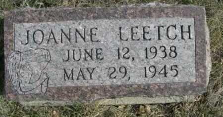 LEETCH, JOANNE - Dawes County, Nebraska | JOANNE LEETCH - Nebraska Gravestone Photos