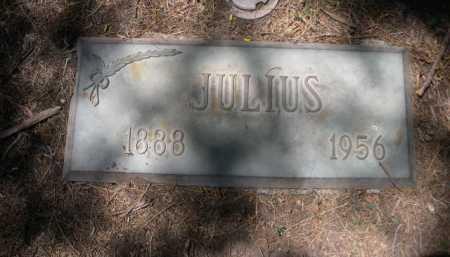 LOEWENTHAL, JULIUS - Dawes County, Nebraska | JULIUS LOEWENTHAL - Nebraska Gravestone Photos