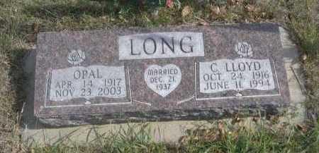 LONG, OPAL - Dawes County, Nebraska   OPAL LONG - Nebraska Gravestone Photos