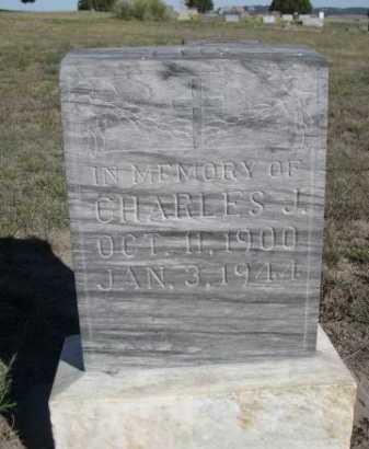 LUX, CHARLES J. - Dawes County, Nebraska   CHARLES J. LUX - Nebraska Gravestone Photos
