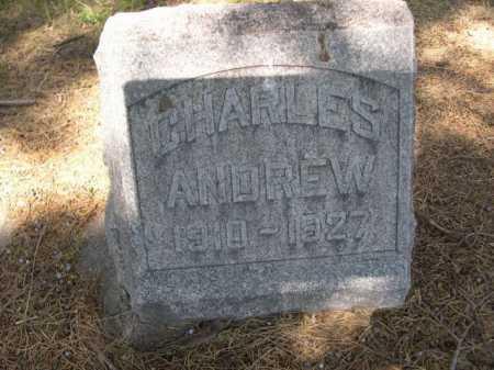 MANN, CHARLES ANDREW - Dawes County, Nebraska | CHARLES ANDREW MANN - Nebraska Gravestone Photos